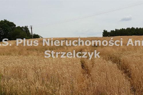Działka Jastrzębie-Zdrój 700 m2