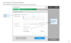 Send Money_ Transaction Details