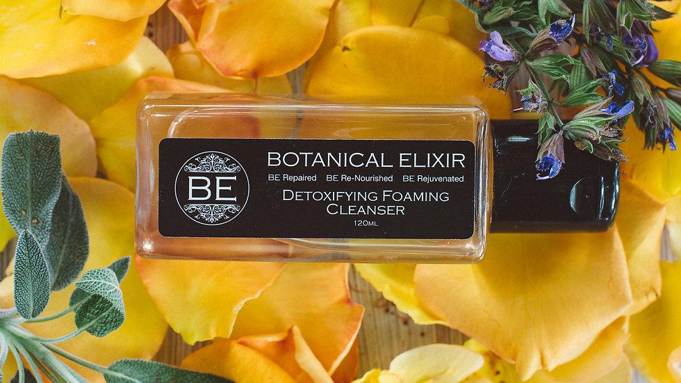 Detoxifying Foaming Cleanser