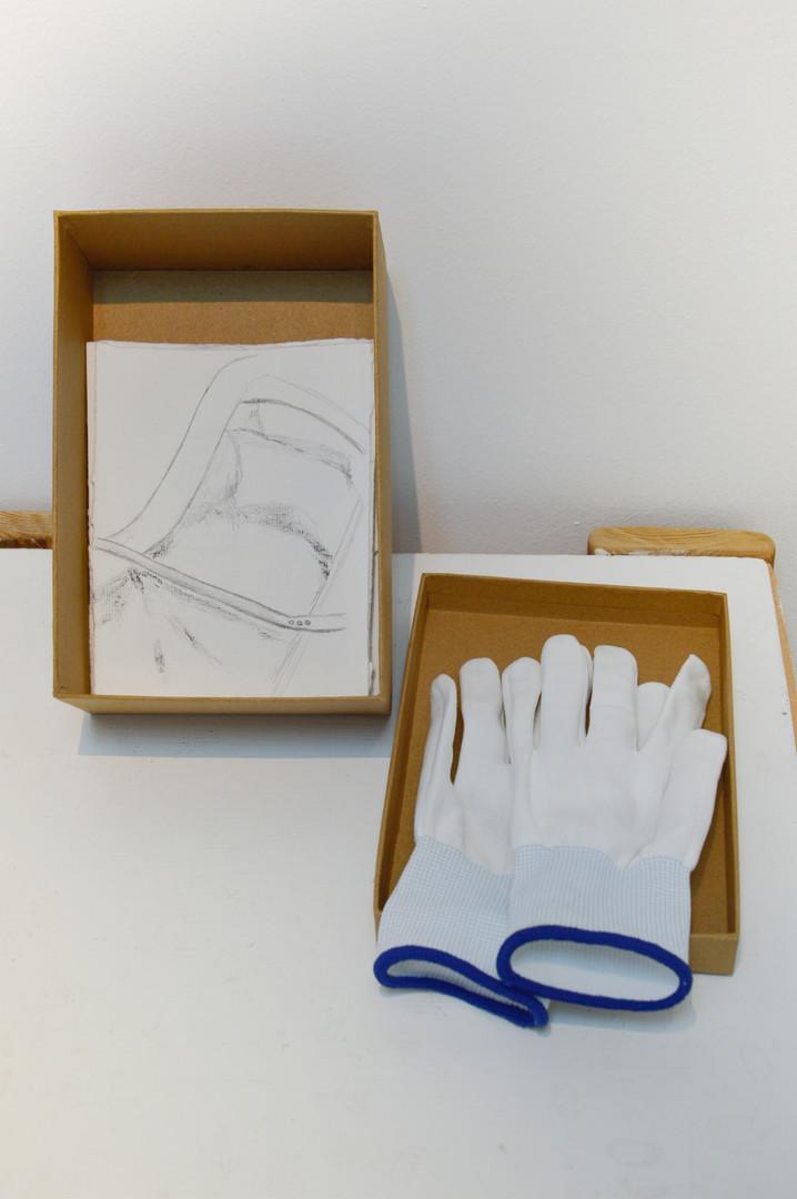 Gloves - Sarah Zakaib.jpg