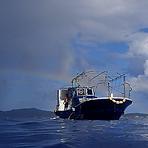 ダイブリゾート母島