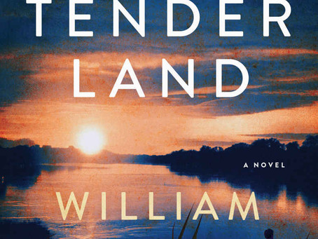 Book recommendation - This Tender Land