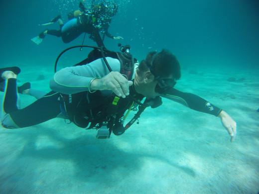 Plongeurs dans le bleu