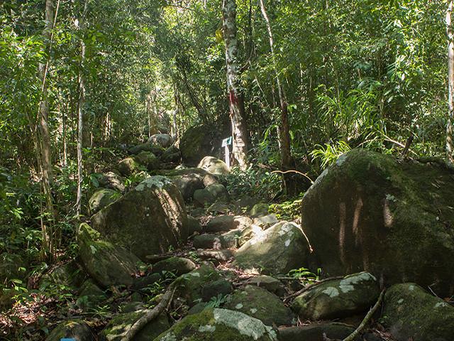 National park of Lokobe
