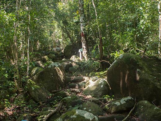Parc Nationnal de Lokobé