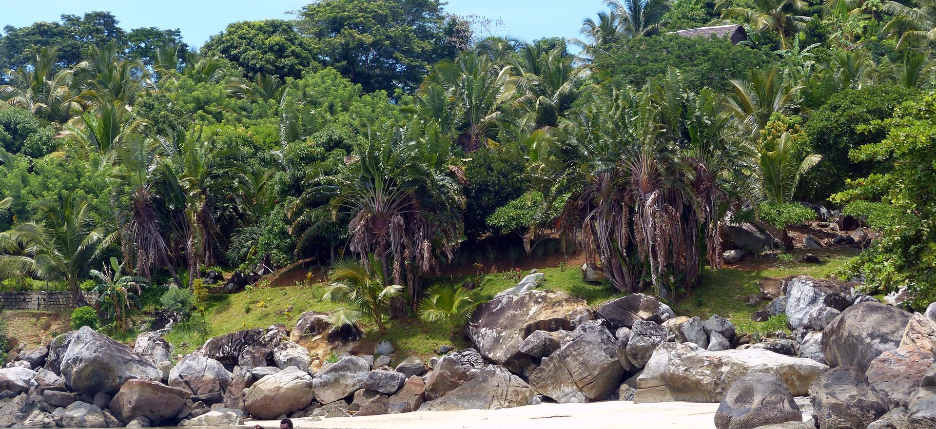 Tour de l'île - Floraly Komba