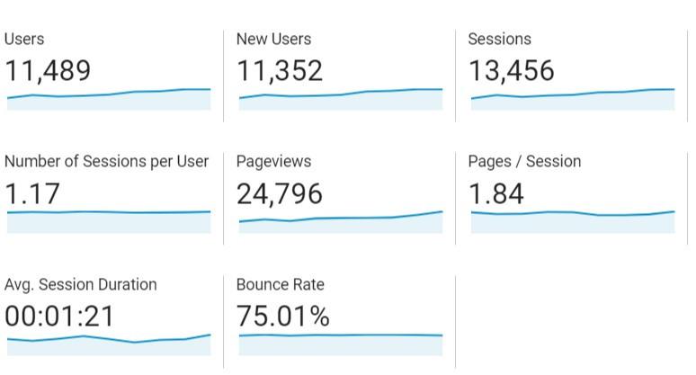 Marketing with website analytics - traffic behaviour