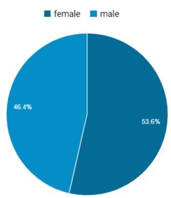 Marketing with website analytics - traffic breakdown by gender
