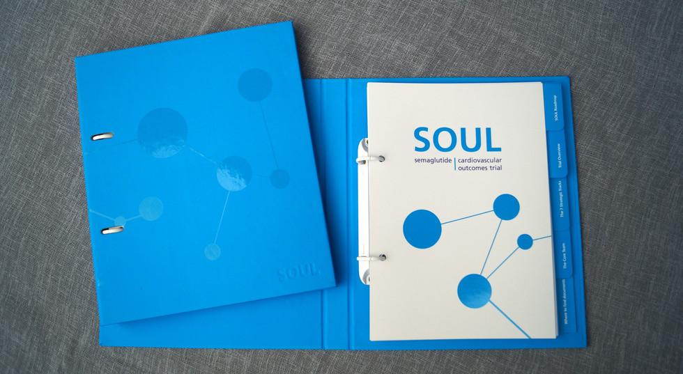Novo Nordisk / SOUL