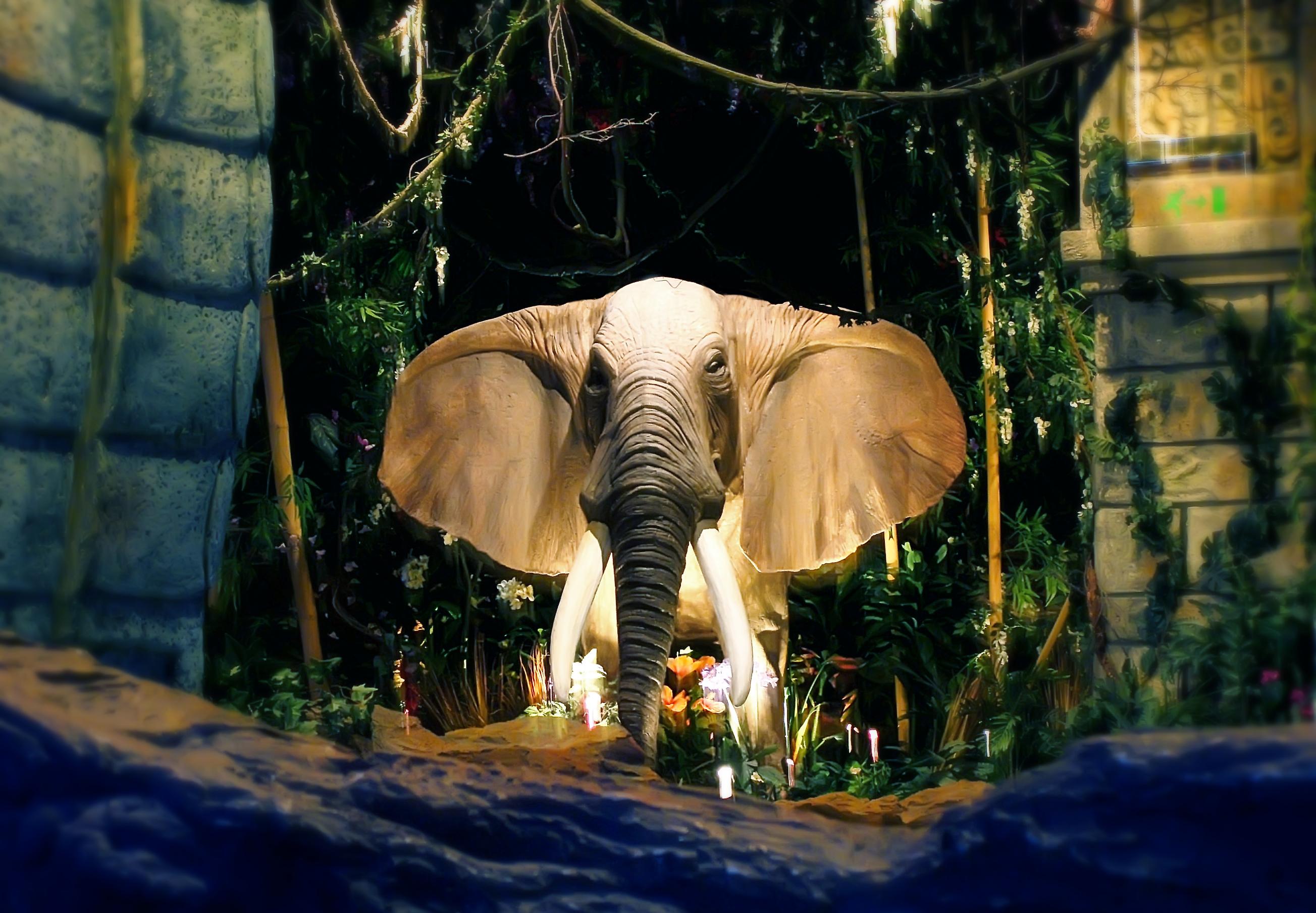 elephantblue