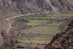 Valle Mostazal_04