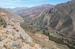 Valle Mostazal_09