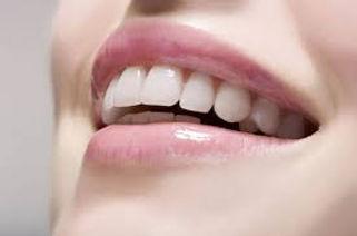 Diş Protez Fiyatları