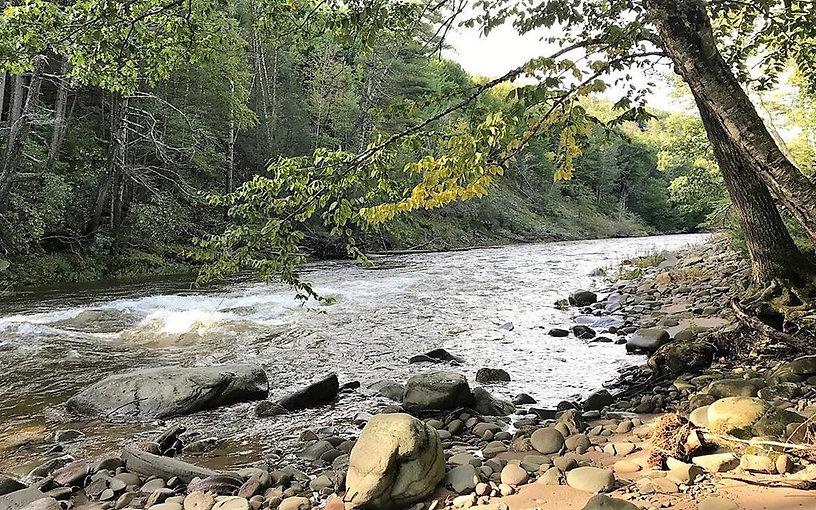 neversink river.jpg