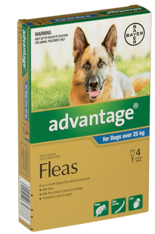 Advantage® for  large dogs 25kg+