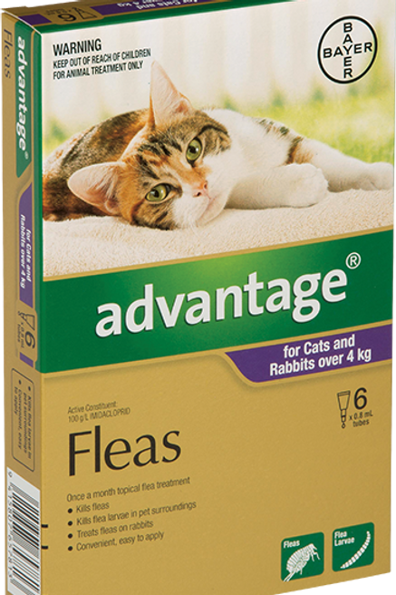 Advantage® for cats over 4kg