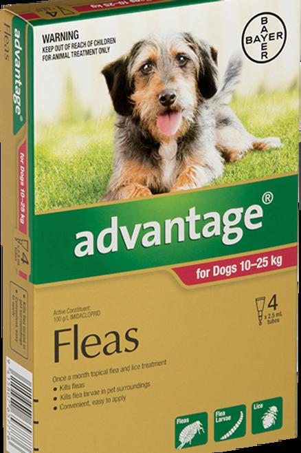 Advantage® for Large Dogs 10 - 25kg