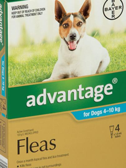 Advantage® for Medium Dogs 4 - 10kg