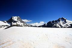 whistler-winter-tour