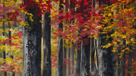 Robles en el bosque