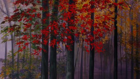 Bosque de Robles