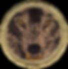 Boy_Scout_Alpha_Wolves_Patrol_Patch_-_B4