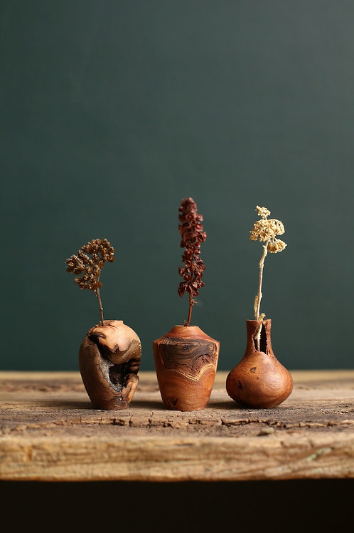 Elm Burr Mini Dried Flower Vase Set #3