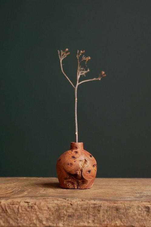 Elm Burl Bud Vase #16