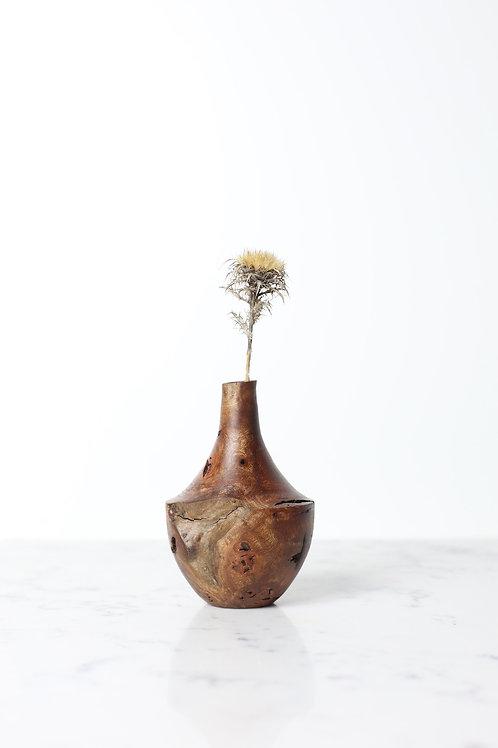 Elm Burr Dried Flower Vase #9
