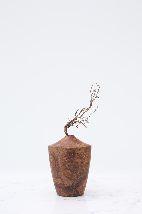 Spalted Elm Burr Dried Flower Vase #6
