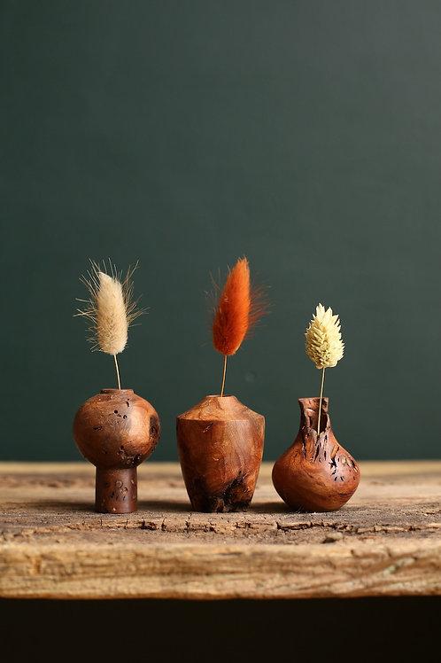Elm Burr Mini Dried Flower Vase Set #4