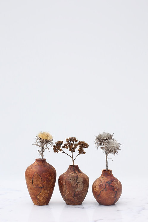 Spalted Elm Burr Mini Dried Flower Vase Set #3