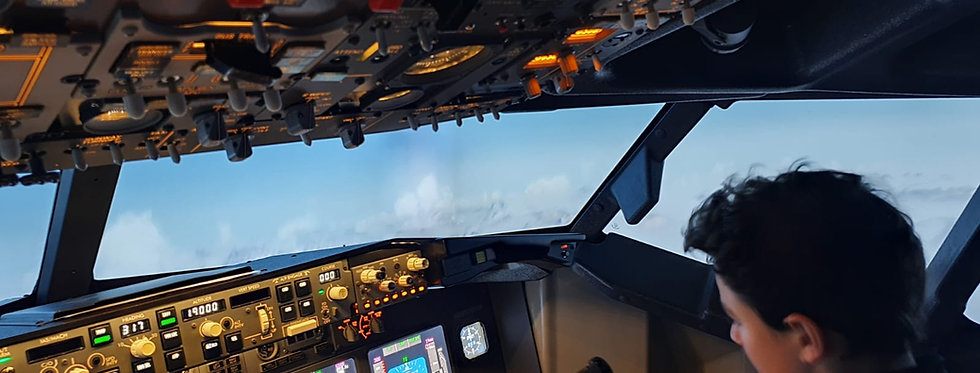 240 Minute Combined Virtual Flight Experience