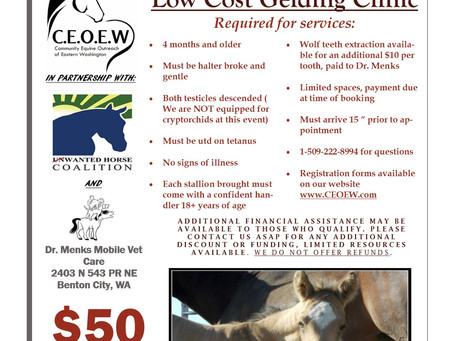 Low Cost Gelding Clinic date has been set!