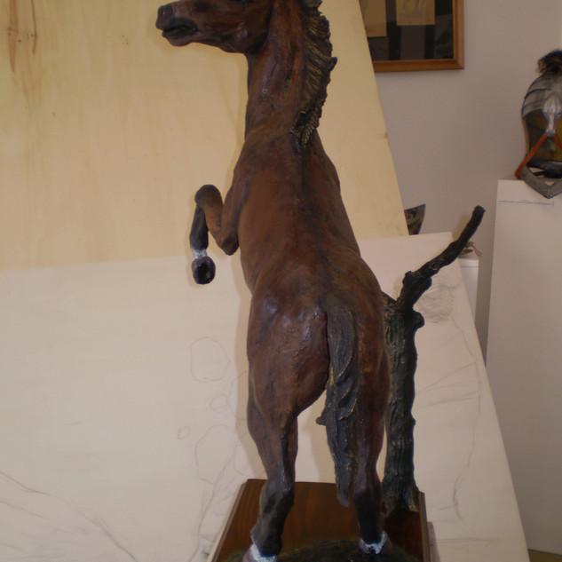 Lucky Horse.JPG