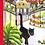 Thumbnail: Gullah, The Nawleans Cat meets Katrina