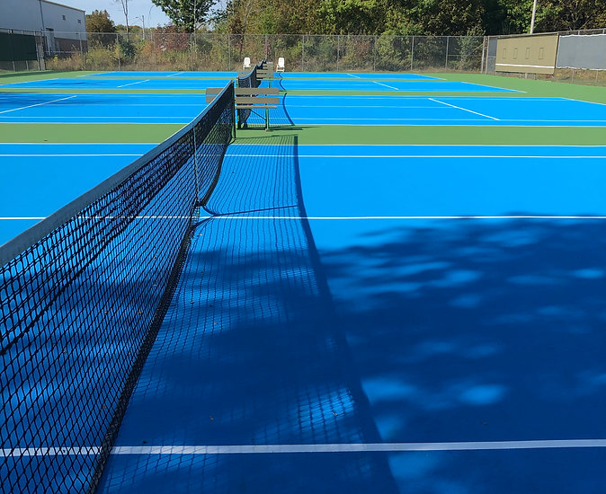 Home page net court.jpg