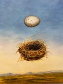 Egg and Nest.JPG