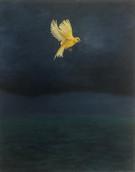 Canary at sea_2021_Kuykendall.jpg