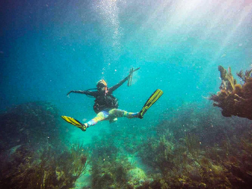 There's Still Time To Help The Florida Keys Marine Sanctuary