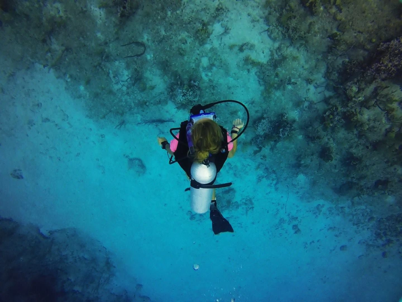 Eco Scuba Diver