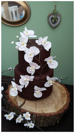 Orchid Chocolate Cake