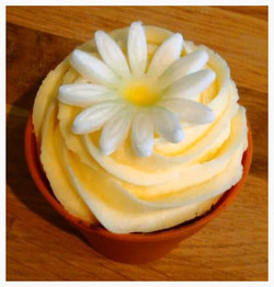 Fresh Daisy Lemon Cupcake
