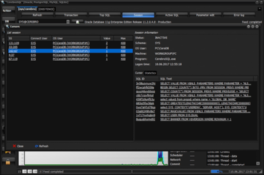 Oracle open cursor [details session information]
