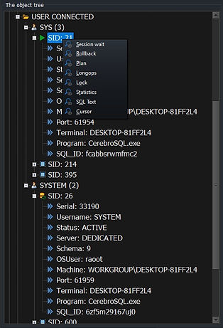 CerebroSQL - public - user connect