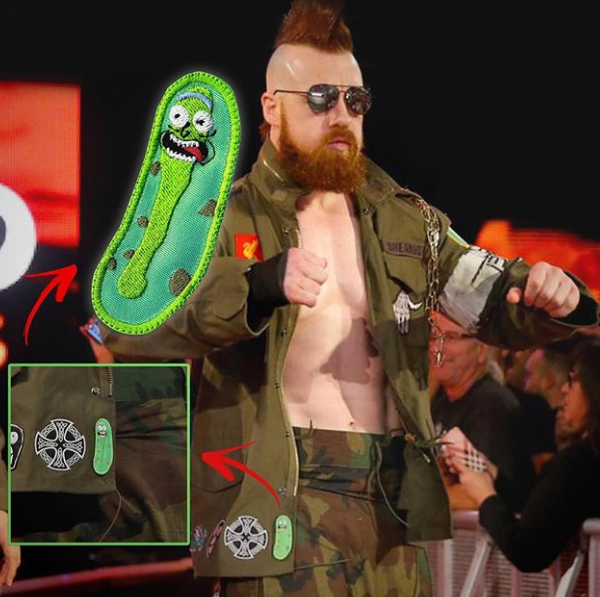 pickle rick sheamus patch