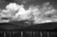 Screen Shot 2020-03-28 at 2.57.11 PM.png