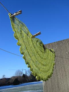 Critron shawl.jpg