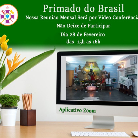 reunião online fev/21