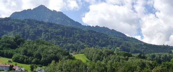 Gärtnerei in Vorarlberg, Kräuterspezialitäten, Gartenbau & Pflege